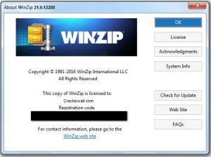 WinZip Pro 25 Crack + Activation Code Free Download [2021]